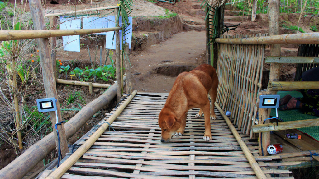 Meet the locals on the other side of the bamboo bridge