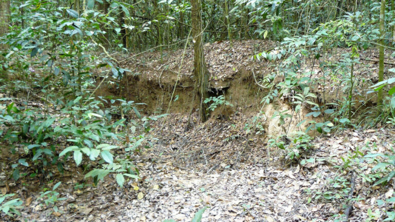 Crater around Cu Chi tunnels during the Vietnam War when Americans aerial bombed the region