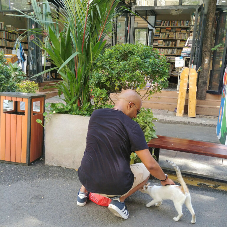 Me, petting a street cat on Book Street or Nguyen Van Binh in Saigon, Vietnam