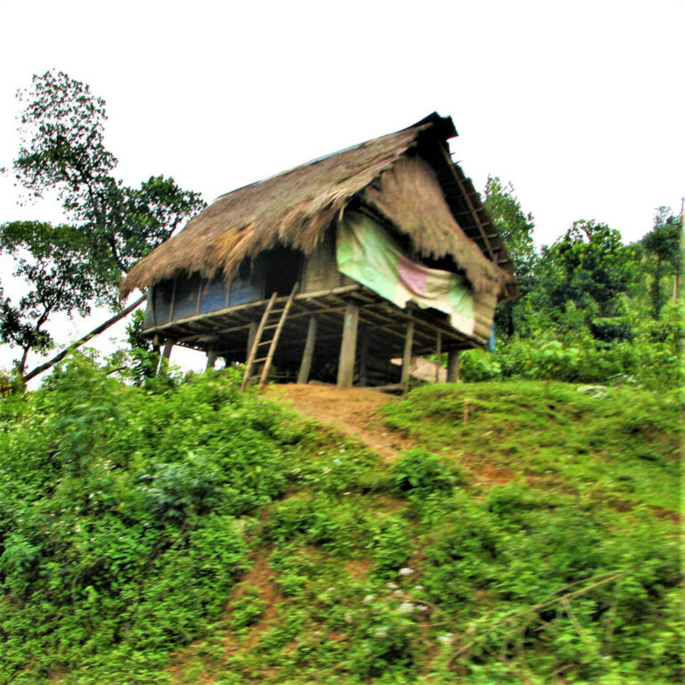 Stilt home which is common in this area