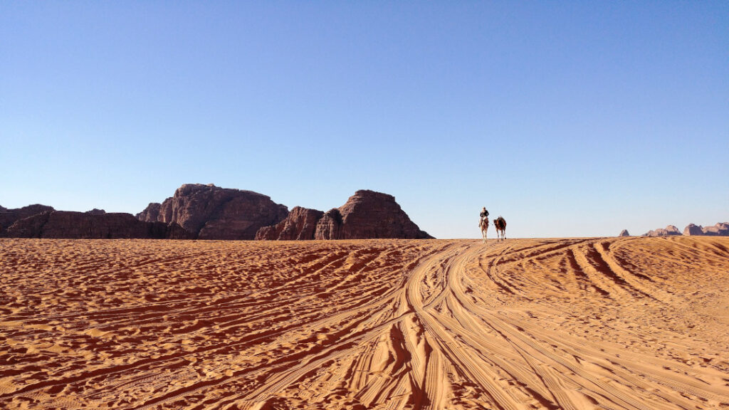A Bedouin and his camel in the horizon