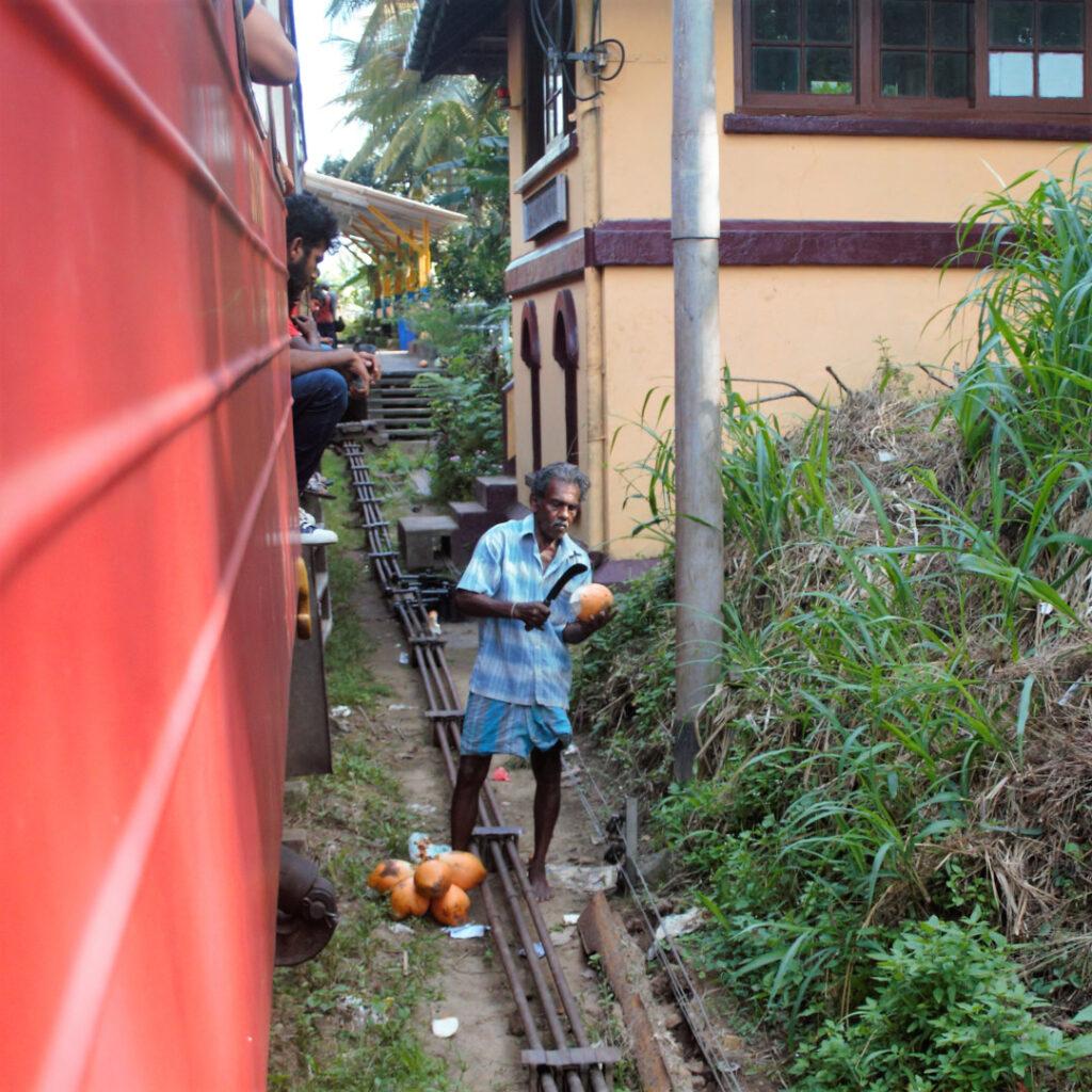A coconut vendor