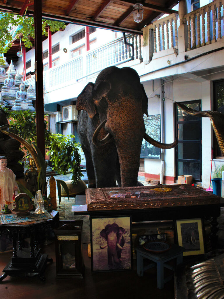 An embalmed elephant greets you in the courtyard