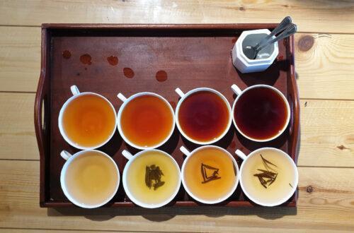 Eight varieties of tea to taste