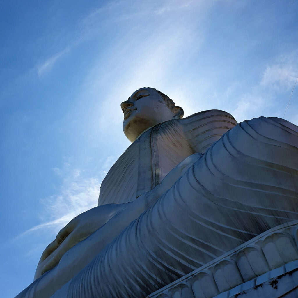 The Buddha from under his feet