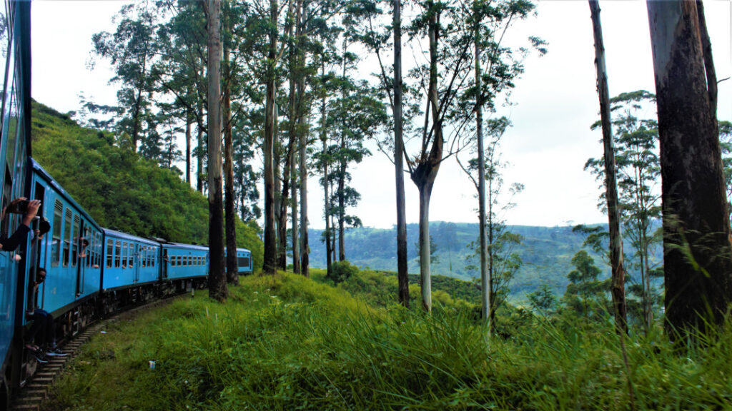 The train chugs through hills and plantations, paddy fields and towns